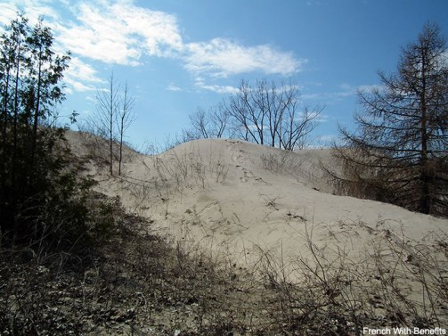 sandbanks_dunes