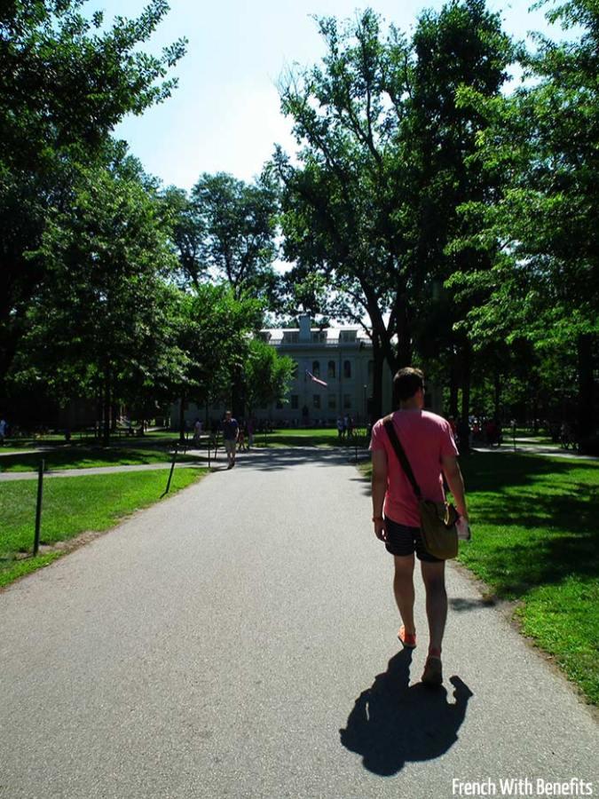 campus-harvard