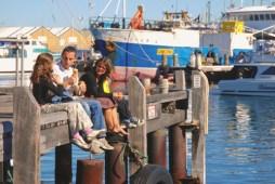 fishning boat harbour