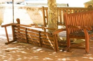 bench 1