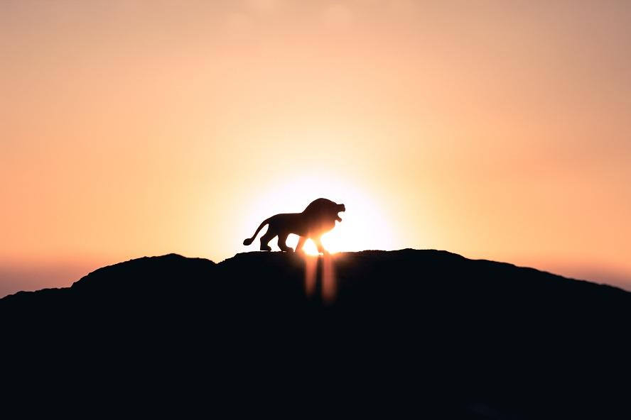 Qui est Jésus: le Lion de la tribu de Juda !