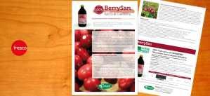 scheda tecnica BerrySan
