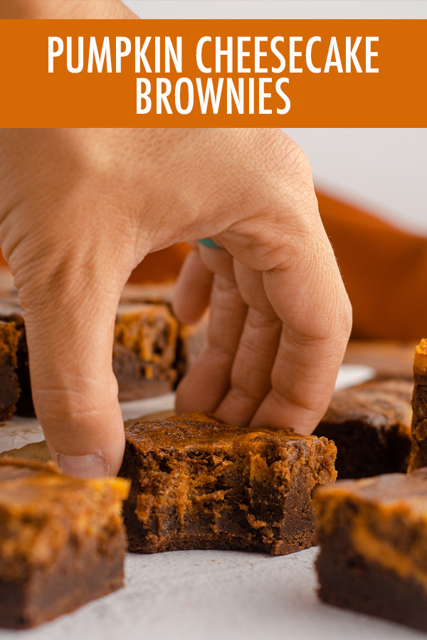 Fudgy scratch brownies swirled with creamy pumpkin cheesecake.