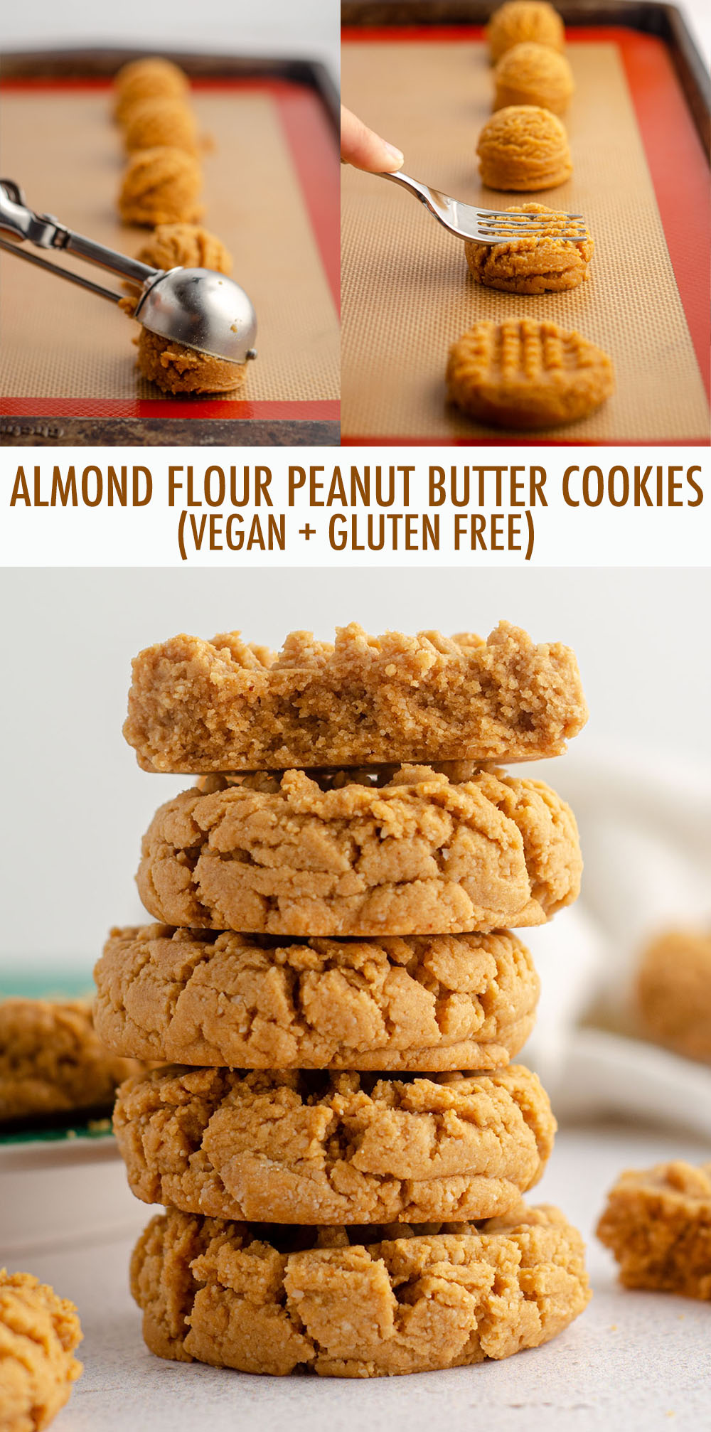 These easy gluten-free peanut butter cookies are full of flavor, sure to satisfy your peanut butter craving, and are completely vegan and egg-free.