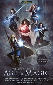Welcome to the age of magic ebook cover