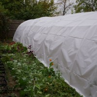 DIY Hoop House for Cut Flowers - Year 2 Update