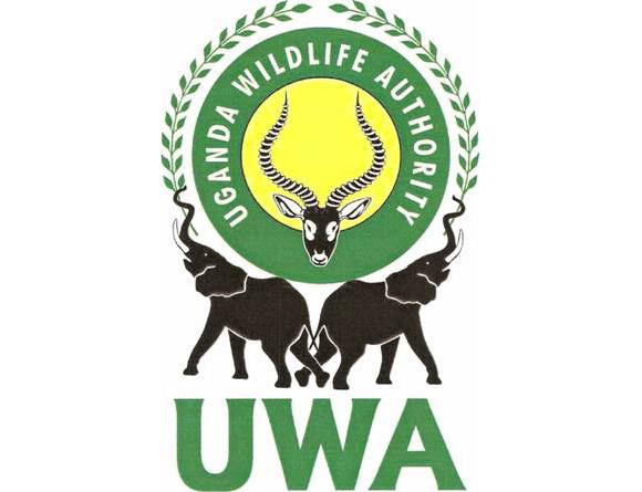 UWA Jobs 2021