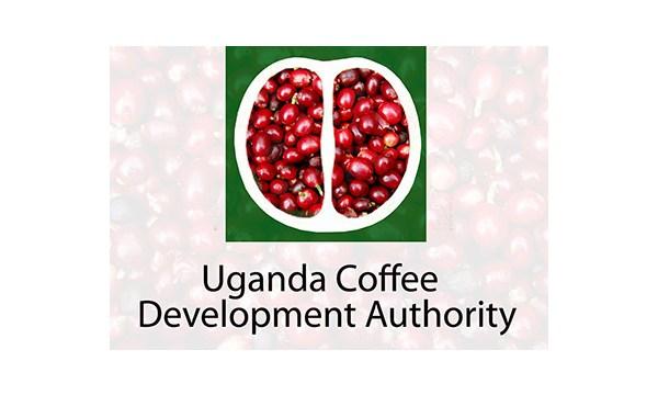 UCDA Uganda Jobs 2020