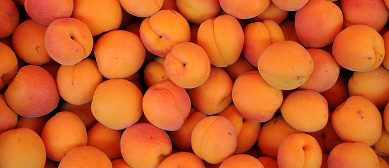 Shelf Life Of Apricots