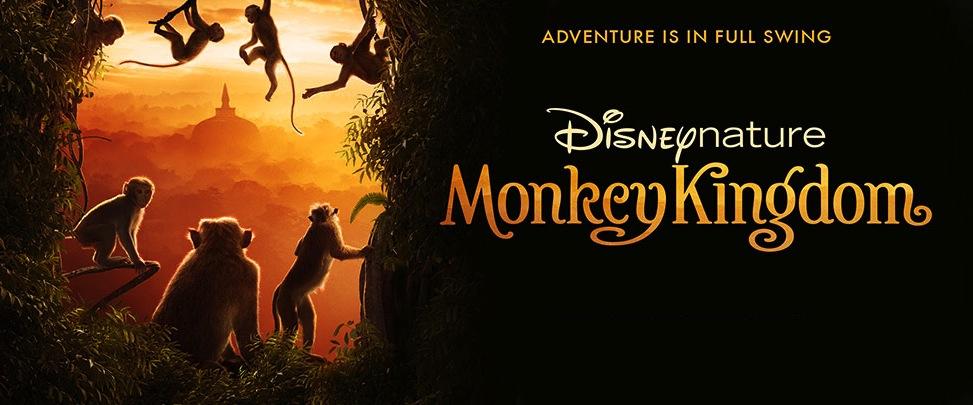Movie Review: 'Monkey Kingdom' Takes Us On A Heartwarming Adventure