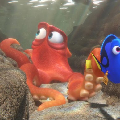 'FINDING DORY' cast weigh in on spontaneity versus planning