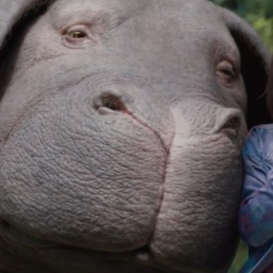 Movie Review: 'OKJA' is okay, but not great