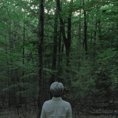 [Disc Review] 'RYUICHI SAKAMOTO: CODA' finds beauty in the sound of nature, 'V FOR VENDETTA' hasn't lost its edge