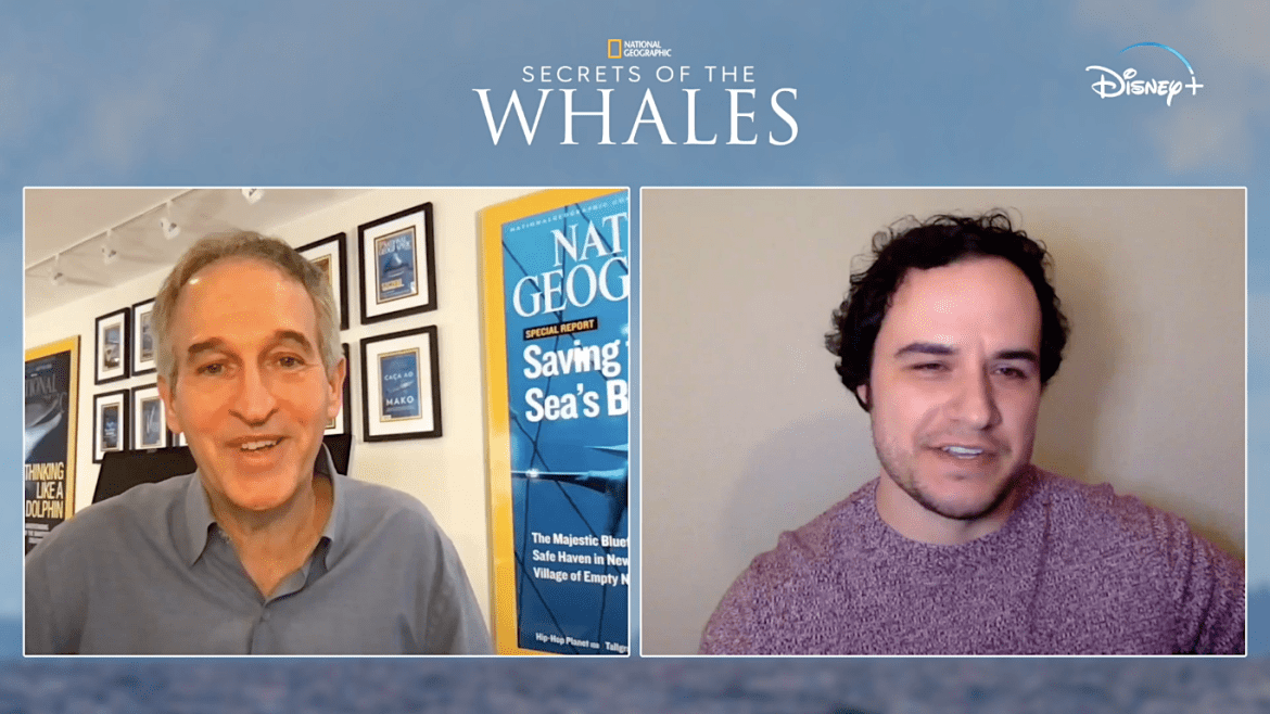 Swimming amid culture and heritage: Photographer Brian Skerry on NatGeo docuseries 'SECRETS OF THE WHALES'