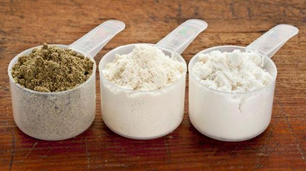 best protein powder