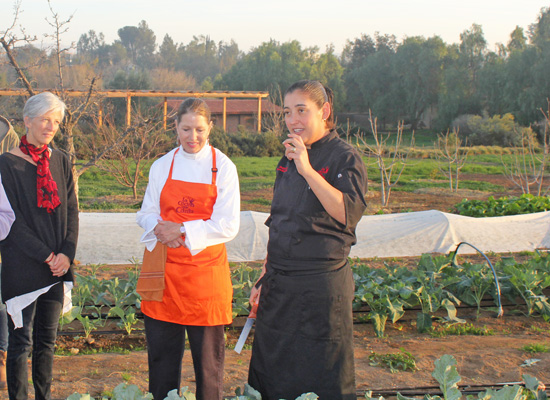 Executive Chef, Denise Roa shows us around the garden.