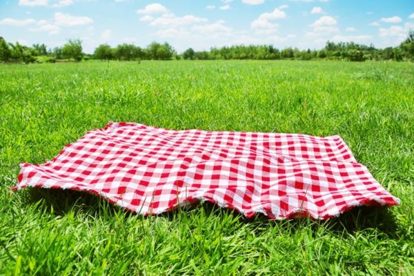 Die Picknickdecke Frische Muster Fr Frhliche Zeit Im