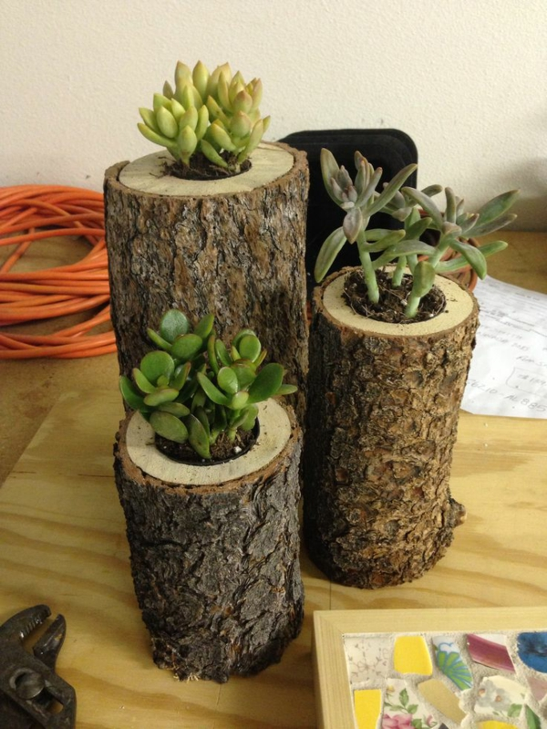Garden Decoration Ideas Waste Material