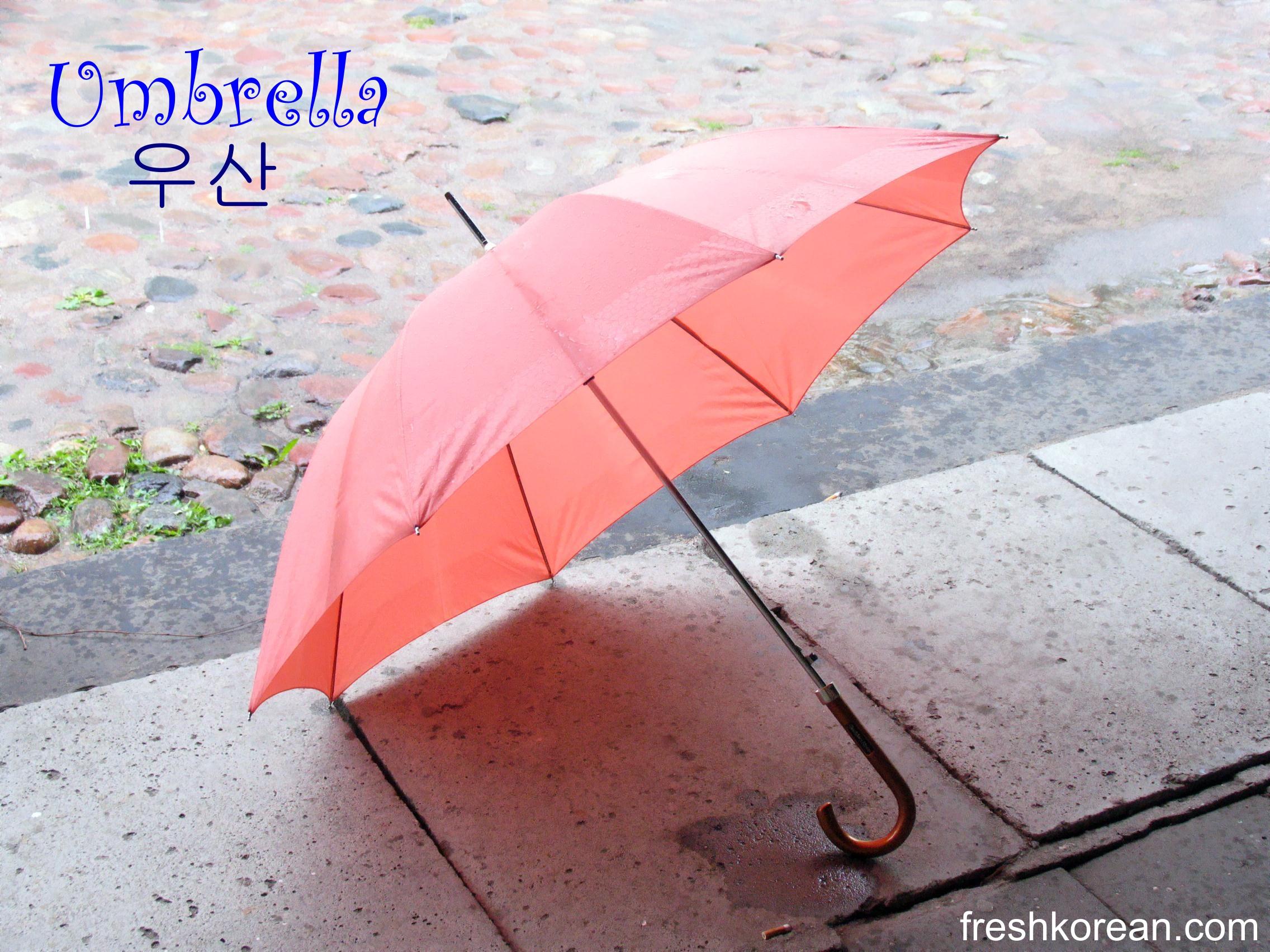 Umbrella Fresh Korean Word Of The Day For Saturday June 30th