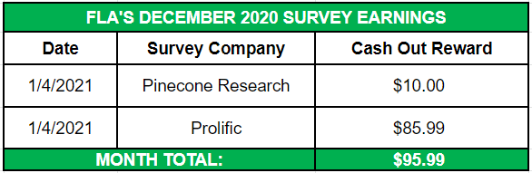December 2020 Side Income Survey Earnings