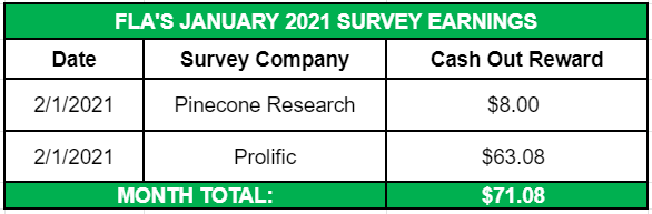 January 2021 Side Income Survey Earnings