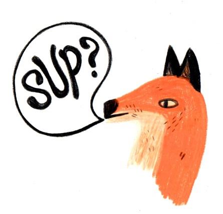 Sup fox?