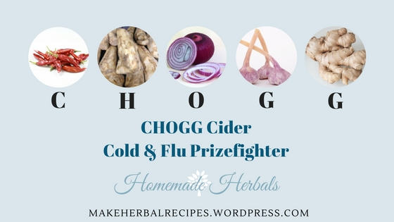 CHOGG Cider -Herbal Cold and Flu Prizefighter