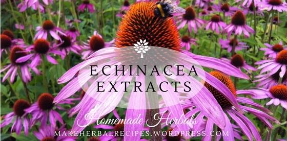 Echinacea Herbal Extracts