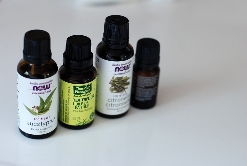 Tea Tree Oil – Herbal First Aid in a Bottle