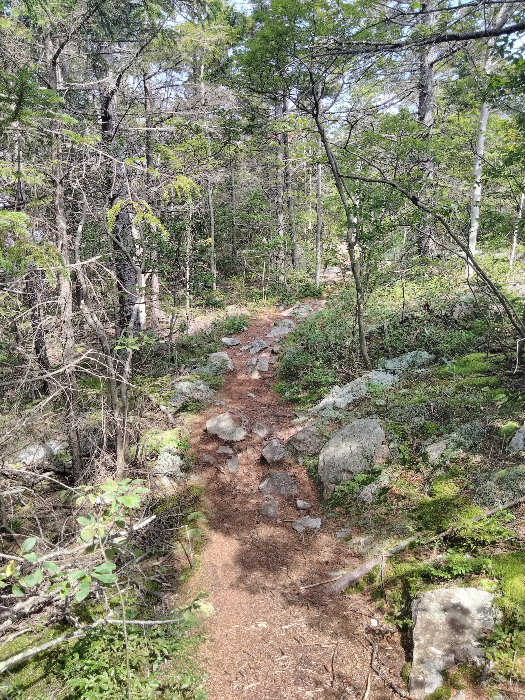 Rocky path leading to White Rocks in Bennington, VT