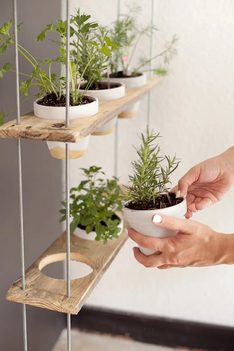 Hanging Herb Garden Ideas custom potted hanging herb garden diy - fresh mommy blog : fresh