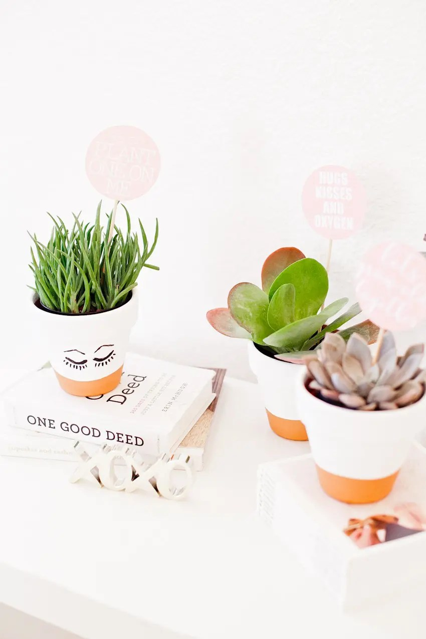 DIY Painted Planter Pot with Succulent. A Perfect Gift for any Holiday and Download the Free Printable Tags for Valentine's Day Gifts!