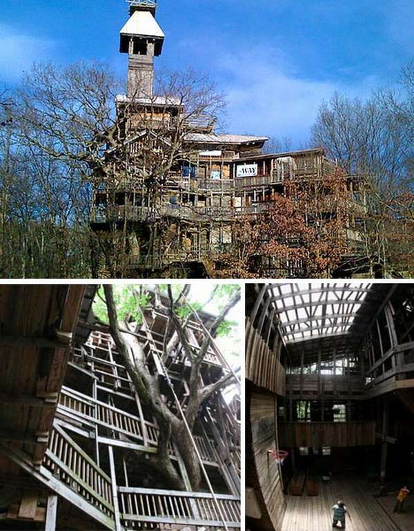 giant tree house Worlds Largest Tree House