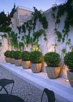 Zaun und Mauer im Garten als ein lebendiger Akzent   fresHouse