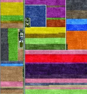 Multi Color Area Rug
