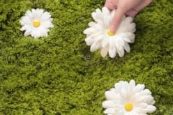 The Daisy Garden Interactive Rug Photos 2