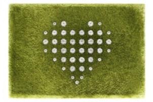 The Daisy Garden Interactive Rug Photos 4