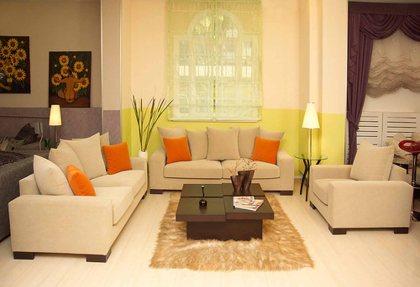 Beautiful Sofa Living Room Furniture