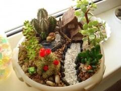 Fairy Gardens Miniature Garden Designs