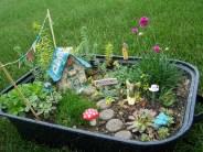 Rectangular Fairy Garden
