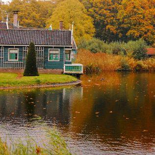 A Tiny Little House On A Lake