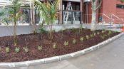 Business Entrance Landscaping