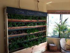 DIY Vertical Indoor Herb Garden