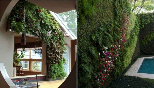 Hydroponics Vertical Wall Garden