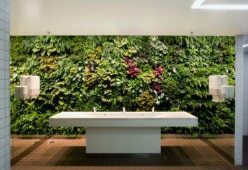 Indoor Vertical Wall Gardens