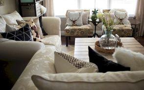 Living Room Pillows Ideas