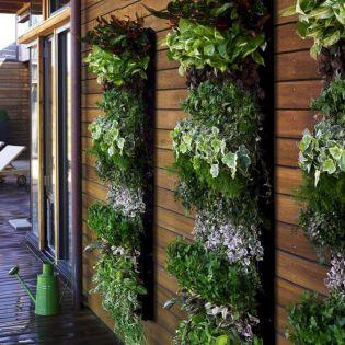 Vertical Herb Garden Idea