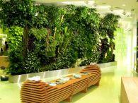 Vertical Indoor Garden Wall
