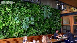 Wall Planters Indoor Vertical Gardens