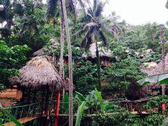 Beautiful Dominican Village Tree Houses Ideas